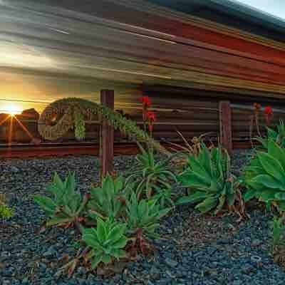A freight train speeds past during a sunset in San Clemente.
