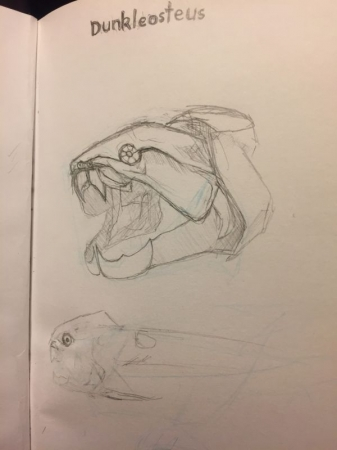 Dunkleosteus Skull (Pencil)
