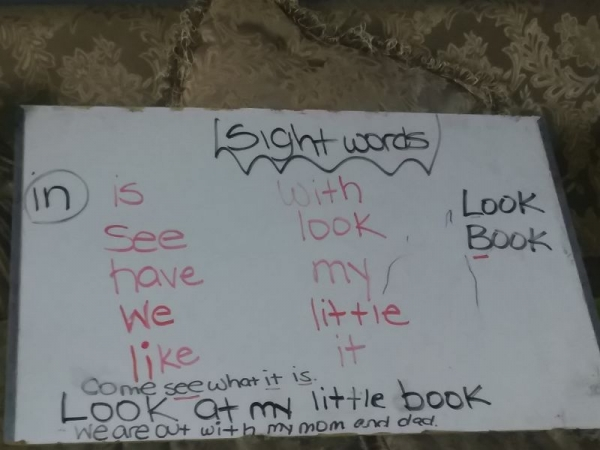 Teaching a 5 and 4 year old sight words and sentences.