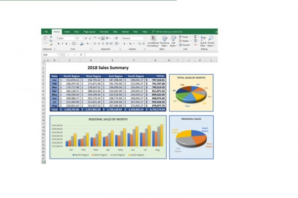 Microsoft Excel Project