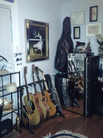 #2 - Pictured are: mandolin, 6-string guitar, 12-string guitar, 6-string classical guitar, electrical guitar, violin, ukulele, and cello!