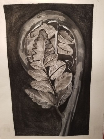 Charcoal,ink wash, graphite, and marker(micron)