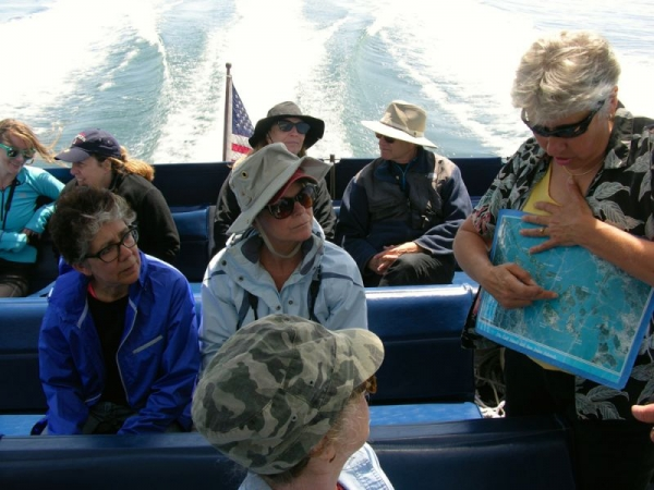 My favorite place to teach--out on a whale watching boat in the Salish Sea!