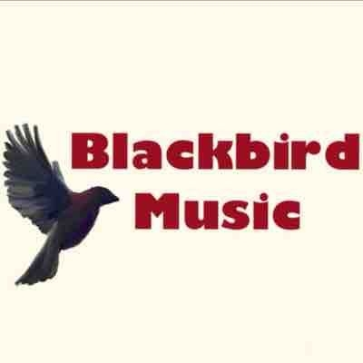 Blackbird Music Simpsonville's Premier Music Academy  for Private Lessons