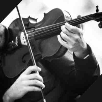 Black and white of my viola