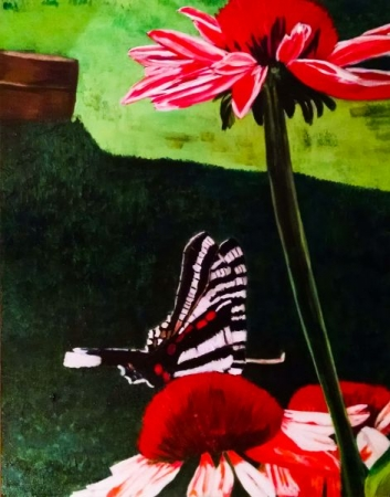 """Butterfly Landing on a Cone Flower"" 
