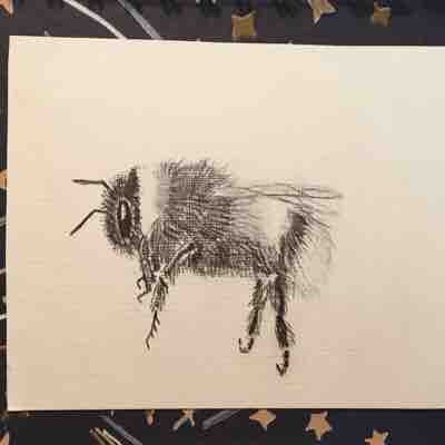 Bumble bee drawing