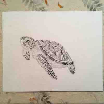 Sea Turtle graphite drawing