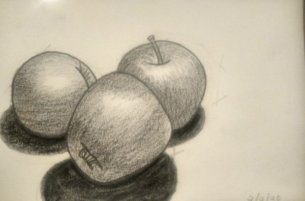 Student Project: Pencil study of three apples.