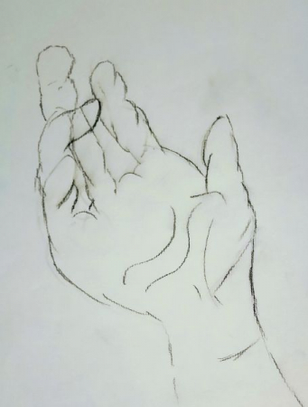Student Project: Pencil study of an open hand.