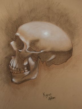 Skull, Charcoal and Oil on Canson Paper