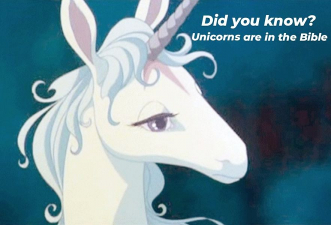 Are unicorns in the Bible?