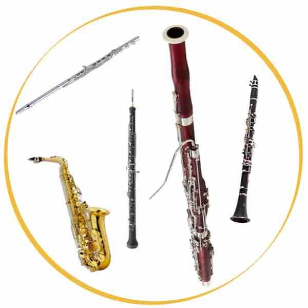 The instruments I play