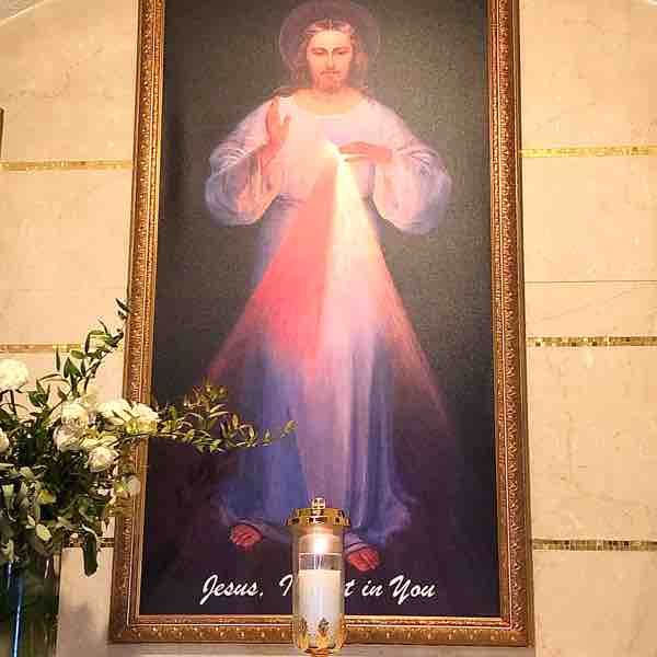 Jesus I Trust In You. 🌹✝️🌹 Let us pray and meditate together. 🙏