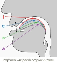 Tongue placement for vowel resonance