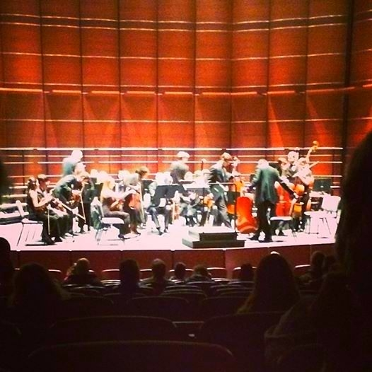 DuPage Chamber Orchestra - Principal Flute - Belushi Performance Hall