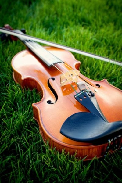 My violin on the grass