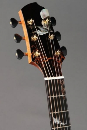 I have several custom guitars, including this one that was featured in Acoustic Guitar magazine.