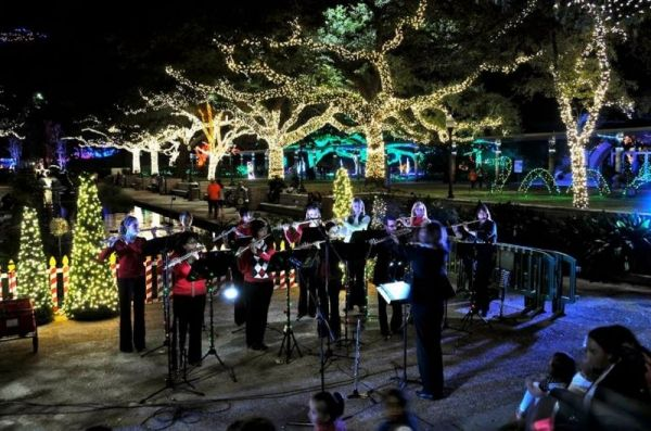 Shimmer Flute Choir at Houston Zoo Lights 2014