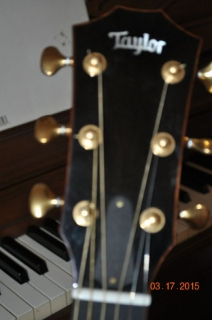 Taylor KOA GS-LTD headstock