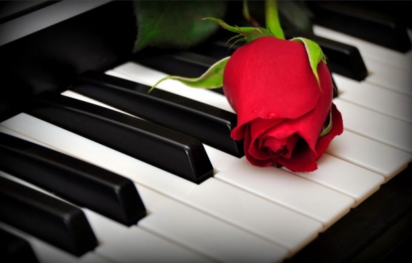 Pianos and Roses go so nicely together!