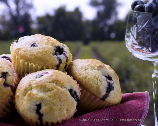 This blueberry field was photographed one day, the muffins in my studio the next day. I used Photoshop to merge the two.