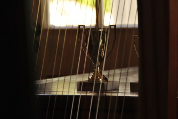 Gold Cup for the Young Musician's Festival Harp Event, seen through the harp strings!