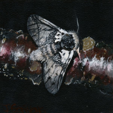 """Acrylic Painting on Small 4"""" x 4"""" Canvas Panel"""