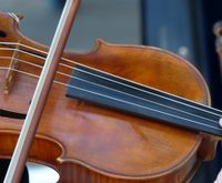 Violin 107: Proper Violin Finger Placement for Playing More Notes