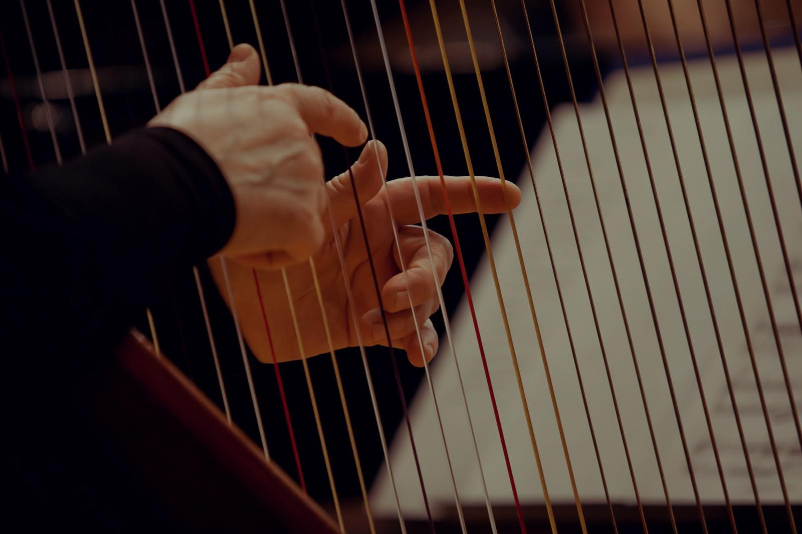 Picture of harp lessons in Utica, MI